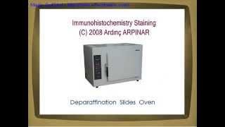 Immunohistochemistry staining steps