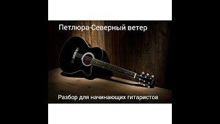 Петлюра- Северный ветер разбор на гитаре для начинающий гитаристов.