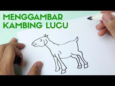 Cara Menggambar Kambing Untuk Anak Anak Youtube