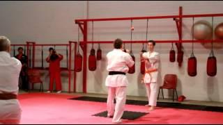 Kyokushin Karate WA demo - kicking apple off katana and breaking baseball bat with shin