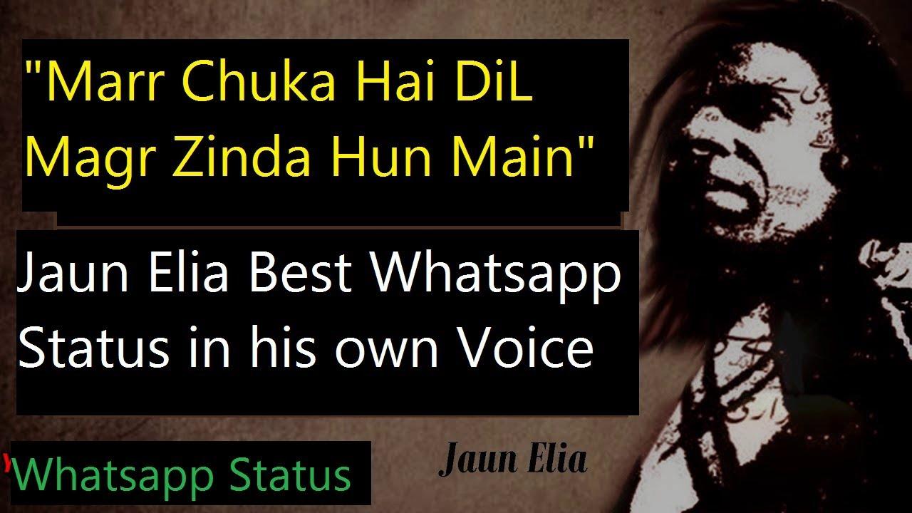 Mar Chuka Hai Dil - Jaun Elia Whatsapp Status | Best Urdu/Hindi Poetry  Status YouTube