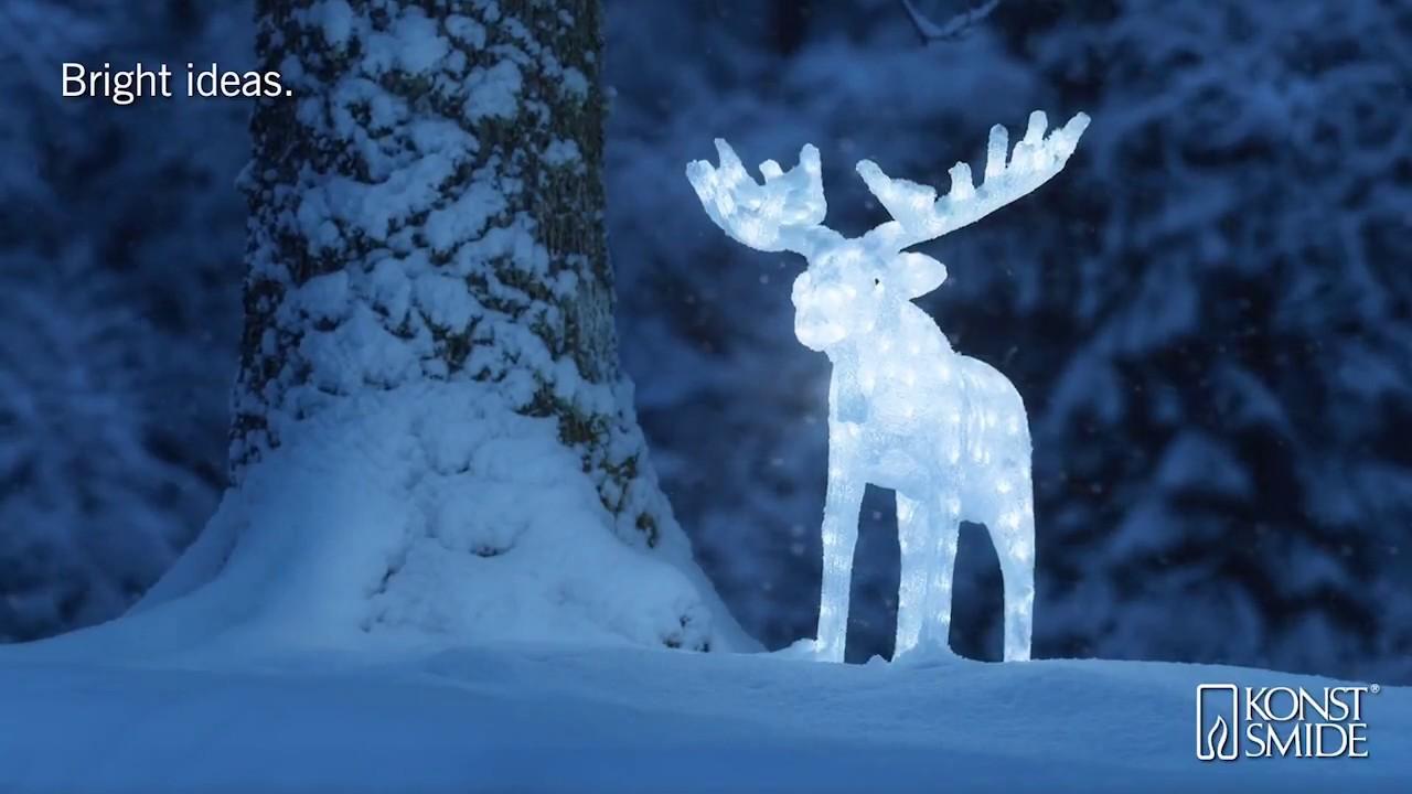 Universal Needs Weihnachtsbeleuchtung.Konstsmide Led Acryl Elch Großer Elch Hirsch Weiße Led