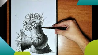 Drawing in charcoal: How to draw sea creatures/drawing a sea anemone