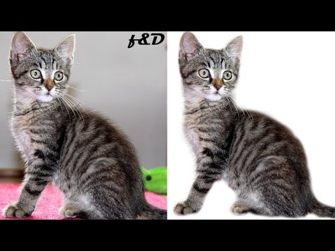 6b309faff8dd How to Remove Background using Quick Mask in Gimp
