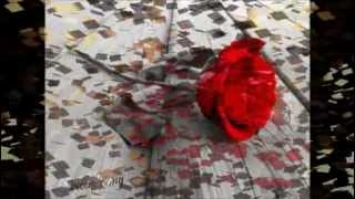 عمار الديك ع ورق الورد