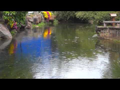 Old Town of Lijiang-Yunnan.Amazing Places in China.Unesco.Full HD