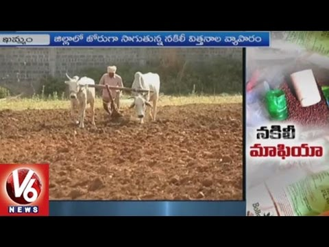 Special Story On Fake Seeds Circulation In Khammam District | V6 News