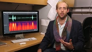 How Does Your Brain Decode Garbled Speech? thumbnail