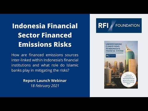Understanding Climate Risks in Indonesia's Financial System | Blake Goud