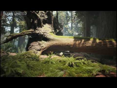 MAWI Redwood Procedural Forest Painting