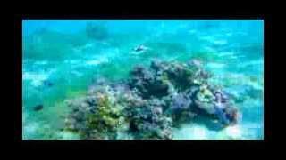 Gumby & Pokey Under The Sea (Mo