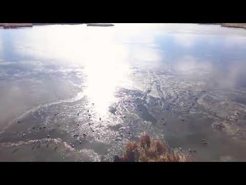 North Dakota Ice-Hole Decoy Breakdown