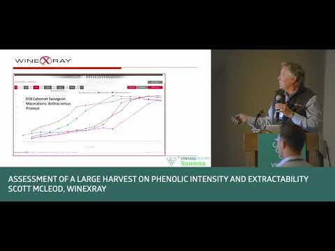 Sonoma 2018 - Scott McLeod - Assessment of a large harvest on phenolic intensity and extractability