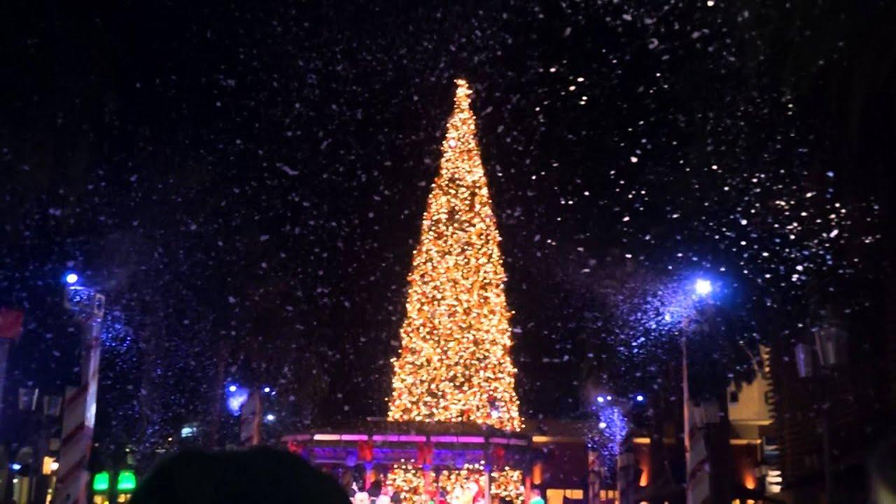 Christmas tree at fashion island 15