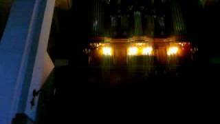 Katedra Zamość Organy Bach Toccata