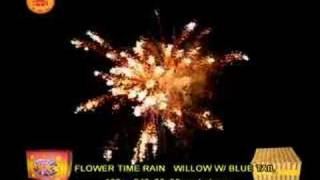 Display shell fireworks - Flower Time Rain Willow with Blue