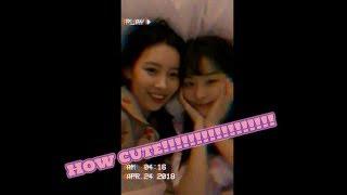 Cutest Seulgi and Sunmi!!! 日本語字幕あり シークレットオンニ 秘密の...