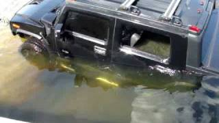 Hummers Can Swim