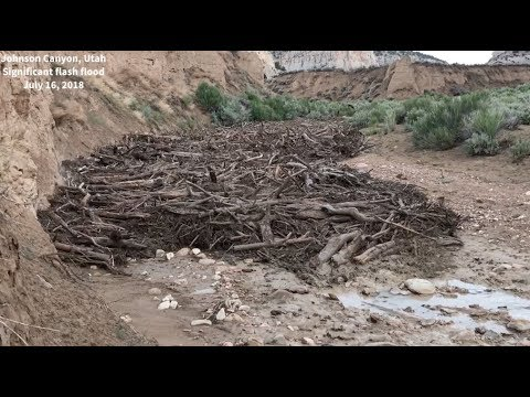 MONSTER flash flood, debris flow in Johnson Canyon, Utah on July 16, 2018!