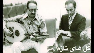 Golhaye Tazeh 1 + Lyrics - گل های تازه شماره ۱، شهیدی و معروفی