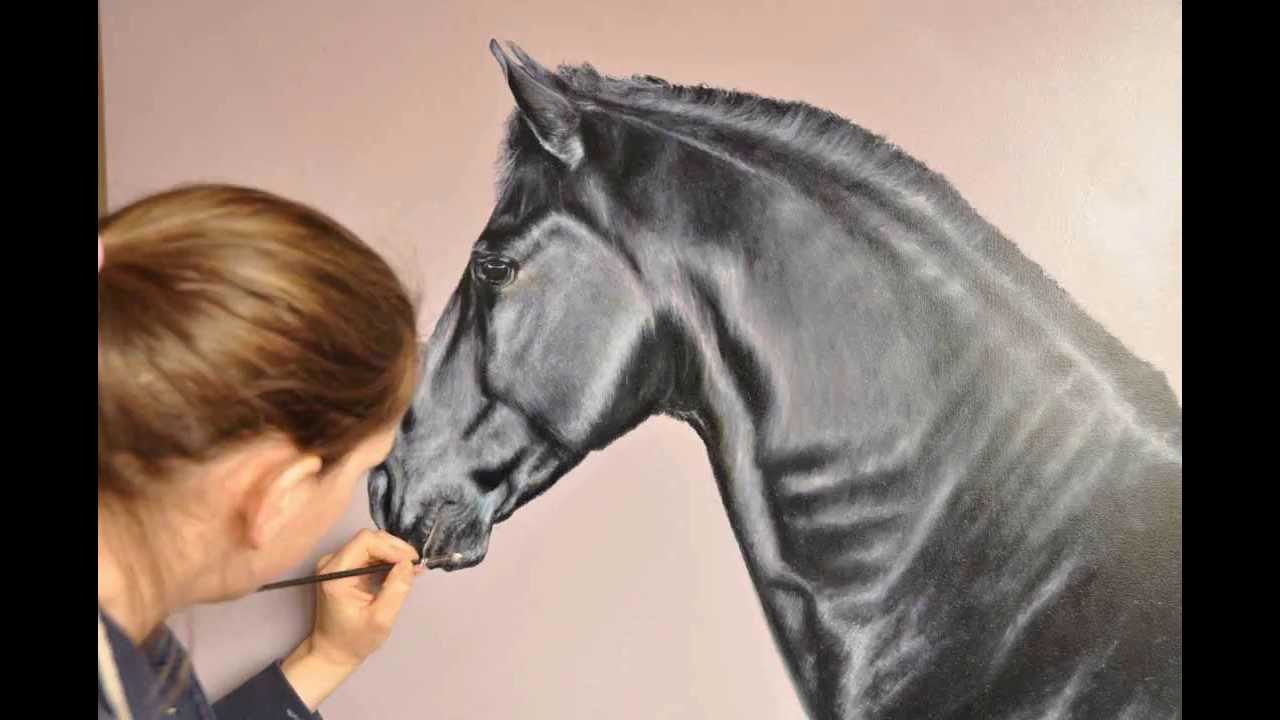 'portrait Of A Black Horse' Time Lapse Oil Painting By Laura Barberriley   Youtube