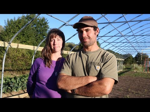 Pariah Dog Farm | Falmouth, Mass. | Irrigation efficiency and a high tunnel