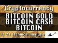 12-21 BITCOIN GOLD : BITCOIN CASH : BITCOIN Update CryptoCurrency Technical Analysis Chart
