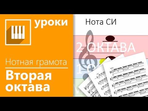 Изучаем ноты басового ключа Музыкальный класс