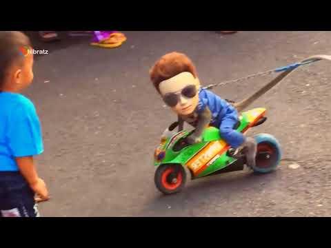 Smart Funny Monkey 🐒 Aksi TOPENG MONYET Paling Pintar dan LUCU Mp3