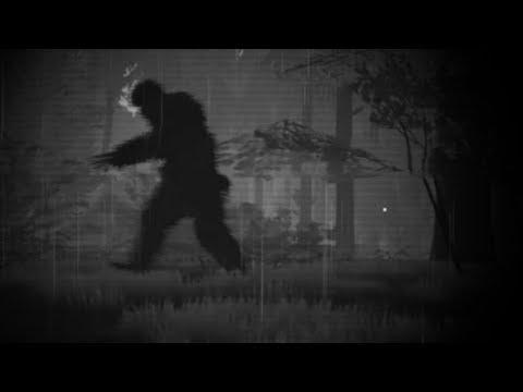 OP ZOEK NAAR BIGFOOT IN EEN GROOT DONKER BOS!! - Royalistiq | Finding Bigfoot #1