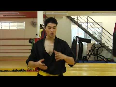 THE_REBEL Martial Arts Fight  Demonstration  (Johnny Nguyen) 2012 HD
