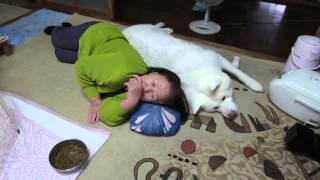 背中をくっ付けながら横になるげんきとお婆さん、犬語と人間語でお互い...