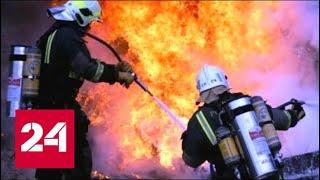 Крупный пожар в Воронежской области локализован - Россия 24