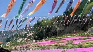〜鯉のぼり(いらかの・・・)〜杉並児童合唱団
