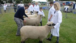 Families And Animals Flock To Newport Show 2019