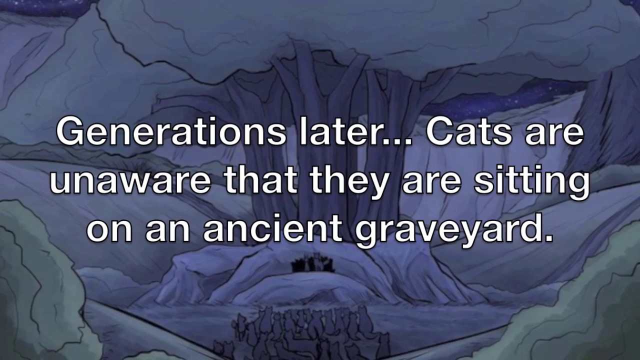 Some New Warriorcats Facts Youtube