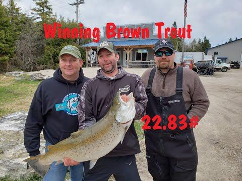 Baileys Harbor Brown Trout Fishing Tournament (Big Brown) 2019 NFN Fishing Adventure Monster Brown