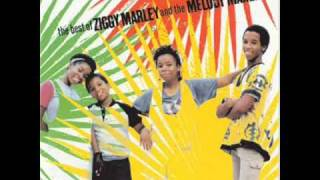 Ziggy Marley - Children Playing in the Streets