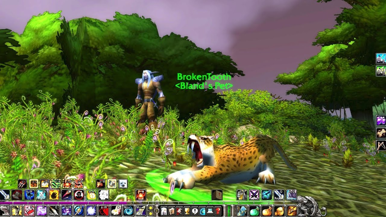 The Best Hunter Pet For Hunters In Wow Classic Pvp Leveling And Pve Youtube