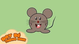 Bé tập vẽ tranh con vật | Em học vẽ con chuột bằng bút chì | Dạy bé thông minh