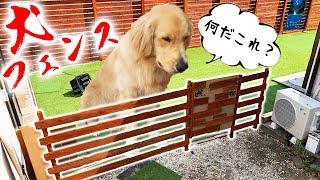 自宅のドッグランに脱走防止用のフェンスう作る!