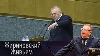 Жириновский: Японцы не получат ни одного метра российской территории