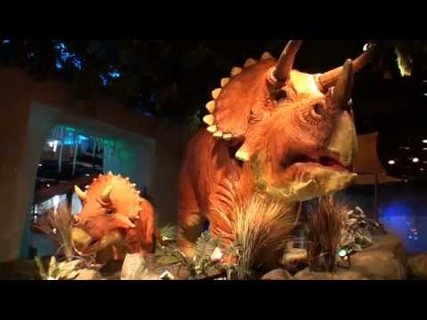 Kansas City Kansas T-REX Cafe 1080P
