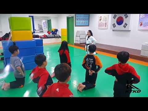 Taekwondo Student Exchange Program for High School and College
