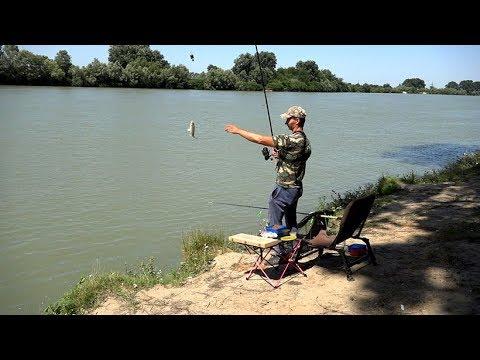 Ловля Карася на реке Кубань, рыбалка на классический фидер