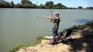 Ловля Карася на реке Кубань рыбалка на классический фидер