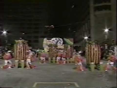 "1991 Bill McIntyre's Shooting Stars ""Flying Down to Rio"""