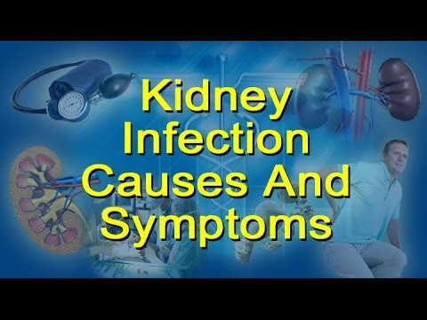 Kidney Infection Causes, Symptoms  - Glomerulonephritis and Pyelonephritis
