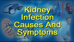 hqdefault - Kidney Infection Causes And Cures