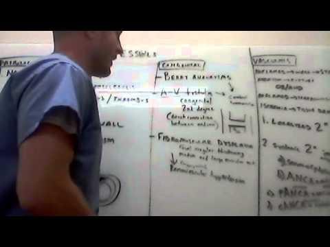 Blood Vessel Pathology 1   1